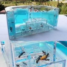 Ant Farm Work Pet Toy Terrarium Baby Gift Box Palace Home Gel Maze Fun