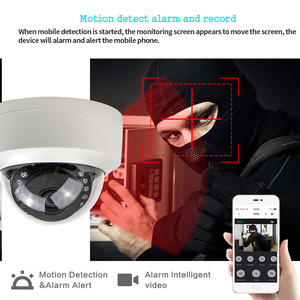 Image 3 - CamHi CCTV Wifi Wireless IP Camera Dome  1080P SONY323 960P 720P P2P Onvif Audio IR Cut Filter Motion Detection Alarm For IP Cam