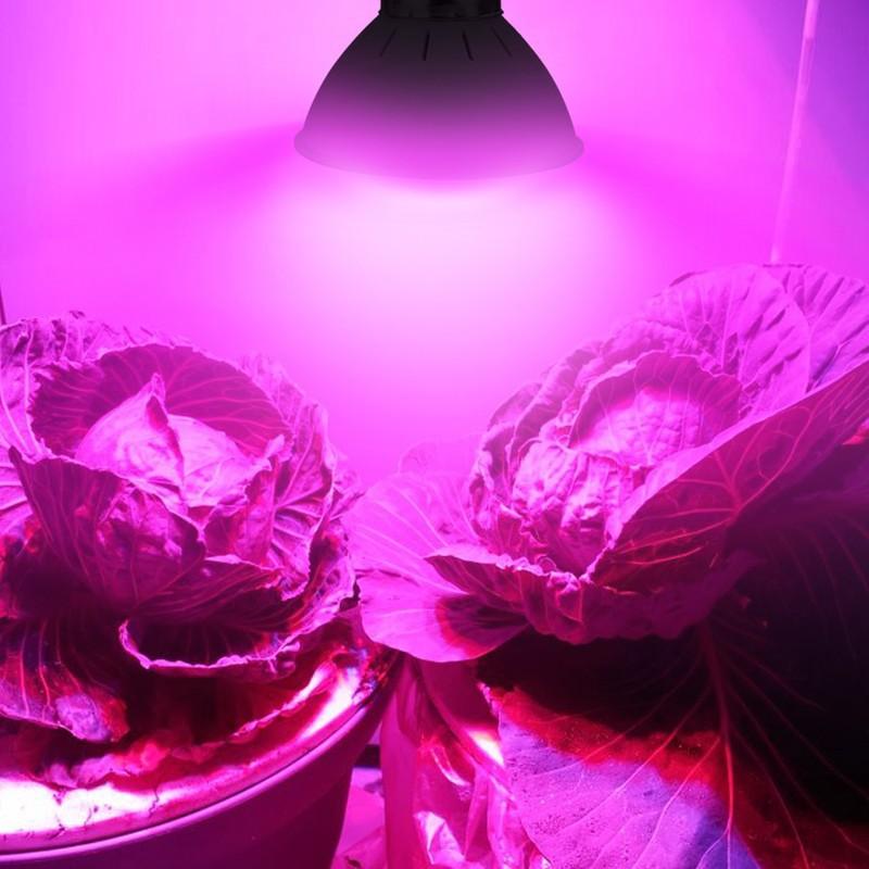LED Plant Grow Light Lamp E27 GU10 LED Grow Bulb AC220V 110V LED Hydroppnic Plant Growth Lighting For Greenhouse Flower