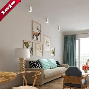 Image 3 - Montaj yüzeyi fuaye/balkon/koridor/yatak odası/restoran kısılabilir 7W 10W silindir Spot LED tavan işık 8*15cm
