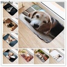 Hongbo yeni yaratıcı kilim yıkanabilir komik köpek paspas banyo paspasları ayak pedi ev dekor banyo paspaslar kapı halı yer halısı