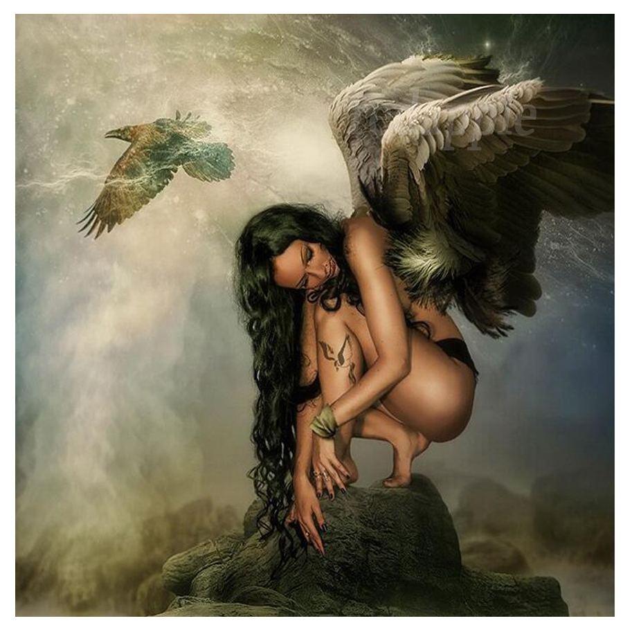 diy diamond embroidery portrait angel girl full stone 5d diamond painting cross stitch black wings woman eagle landscape decor(China)