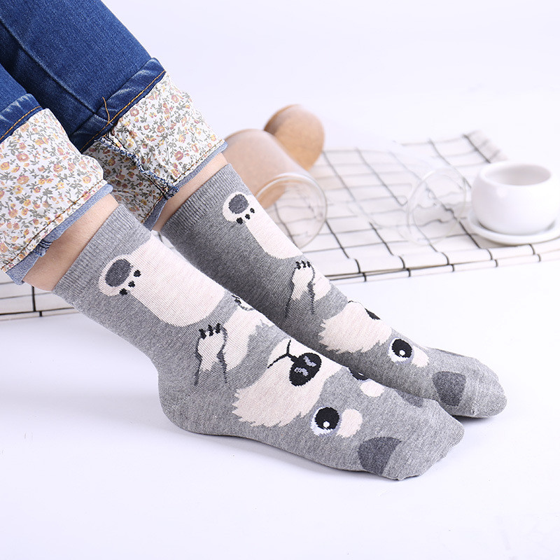 HTB1vVImFnJYBeNjy1zeq6yhzVXaB - 5 Pairs Women Half Foot Toe Cover Socks Black Invisible Solid Soft Socks
