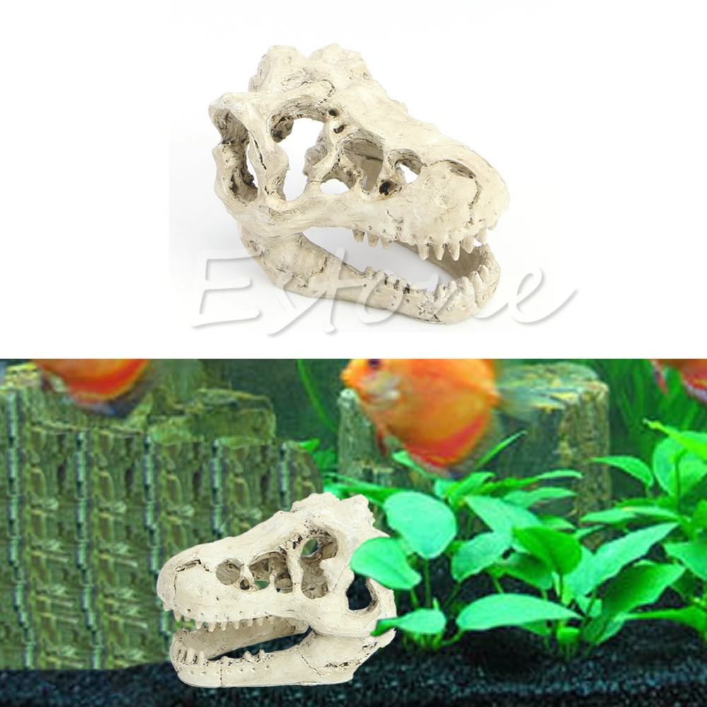 1Pc New Style Realistic Tyrannosaurus Scale Dinosaur Skull Model Collectable aquarium decor Ornament in Decorations from Home Garden