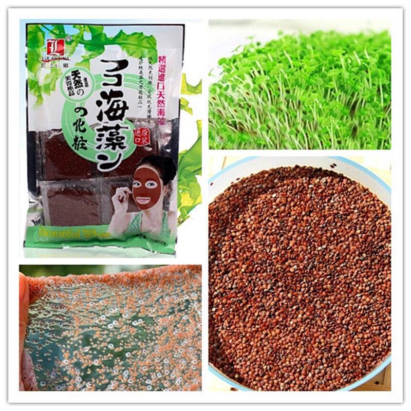 Acryl Puder & Flüssigkeiten Preiswert Kaufen Hohe Qualität 85% Laminaria Japonica Extrakt Pulver Fucoidan Seetang Pulver Kostenloser Versand Schönheit & Gesundheit