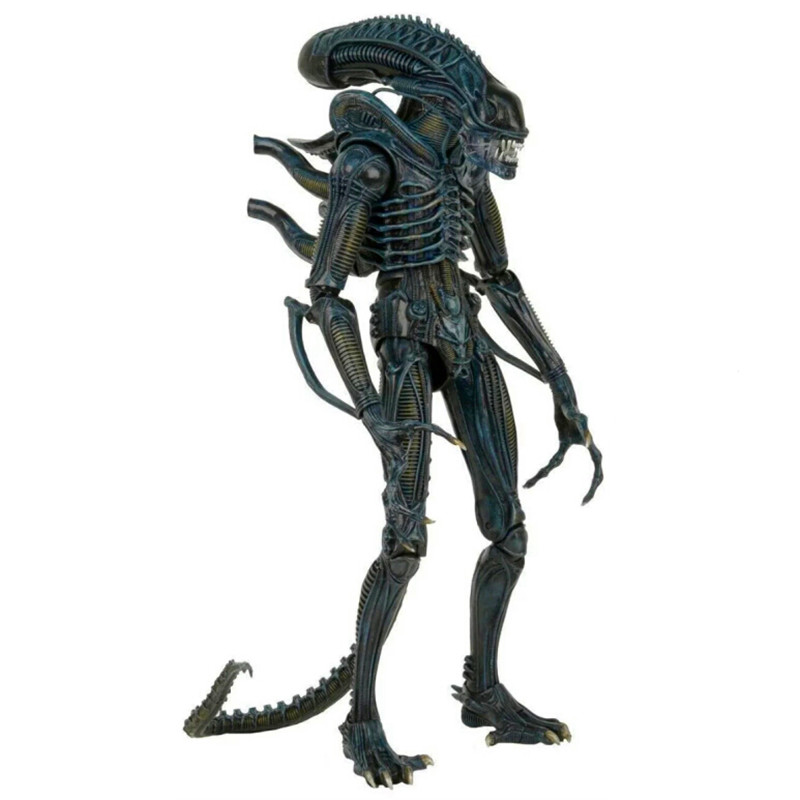 2 style collection Display BIG figures NECA toy ALIEN Predators 1/4 Scale Xenomorph Warrior Super Big PVC action figure model neca planet of the apes george taylor clothed pvc action figure collection model toy 8 20cm