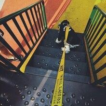Мода Pet Ошейник Поводок 1,6 м нейлоновая веревка поводок для собак домашних животных привести щенка Средний Большой товары для собак детская безопасн