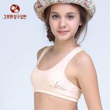 Bra Underwear Buy Cheap