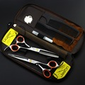 High Quality 5.5/6 inch JASON Professional Hairdressing Hair Scissors set 62HRC Hair Cut Cutting Barber kit  VH055