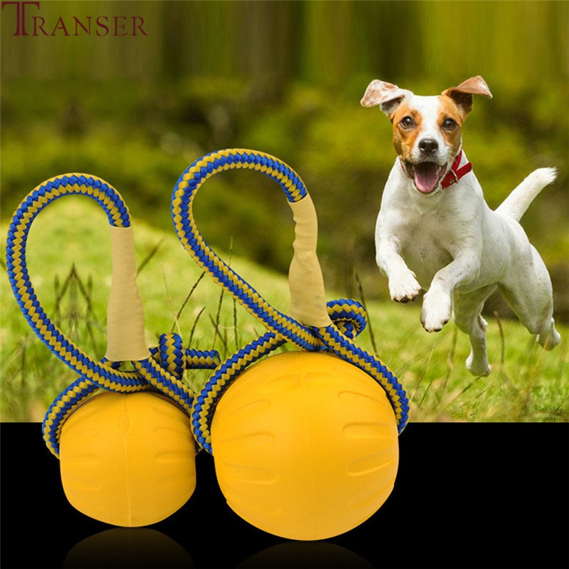 Transer Pet Supply Durable Dog Toy Outdoor Training Fetch Bite Chew Interactive Rope Ball Toy For Small Large Dog 80103