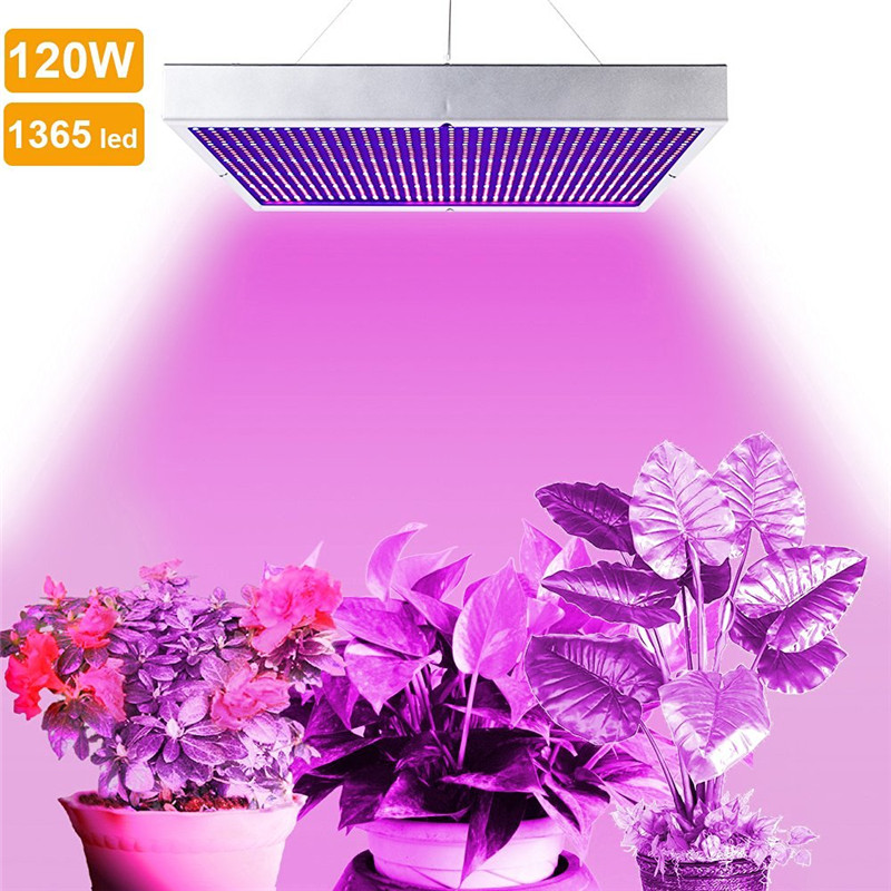 ФОТО Lumiparty 120w Led Plant Growing Lamp for Indoor Gardening System Greenhouse Hydroponics Grow Lamp For Flowering Plant Lighting