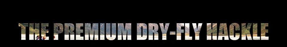 6 noir CDC Trémie Truites mouches Dry Fly Taille 12