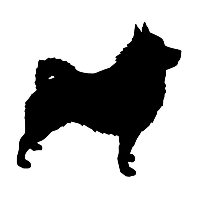 21.6*20.3CM Schipperke Dog Vinyl Decal Waterproof Personality Car Stickers Car Styling Decoration Black/Silver S1-0442