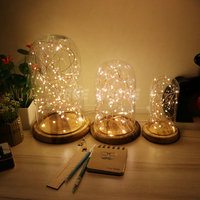 Romantic personality Atmosphere lamp led night light wooden base retro night glass light for Kids girls room decorative present