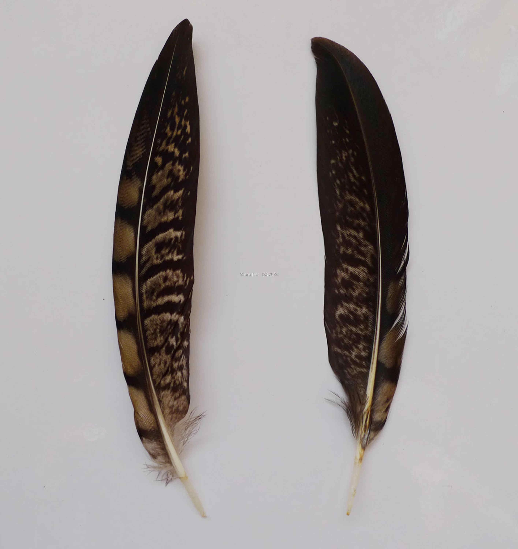 50/100 шт 10-15 см натуральные перья фазана куриное перо для украшение ручной работы танцевальные комплекты пижам «Хелло Китти» для маленьких мальчиков