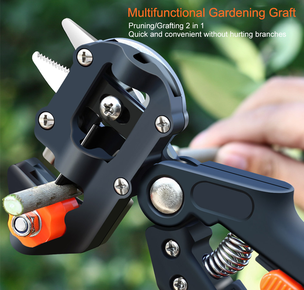 Grafting scissors 01