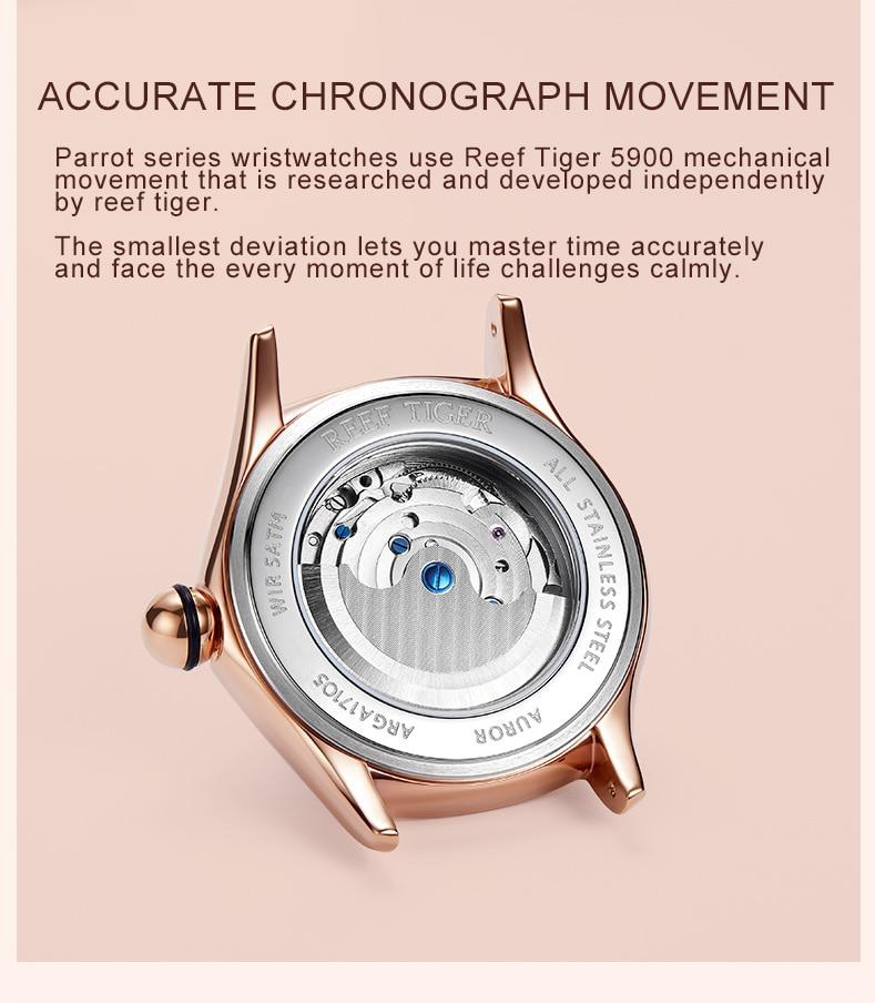 Montres de luxe Mécanique Verre saphir  Bracelet En Cuir