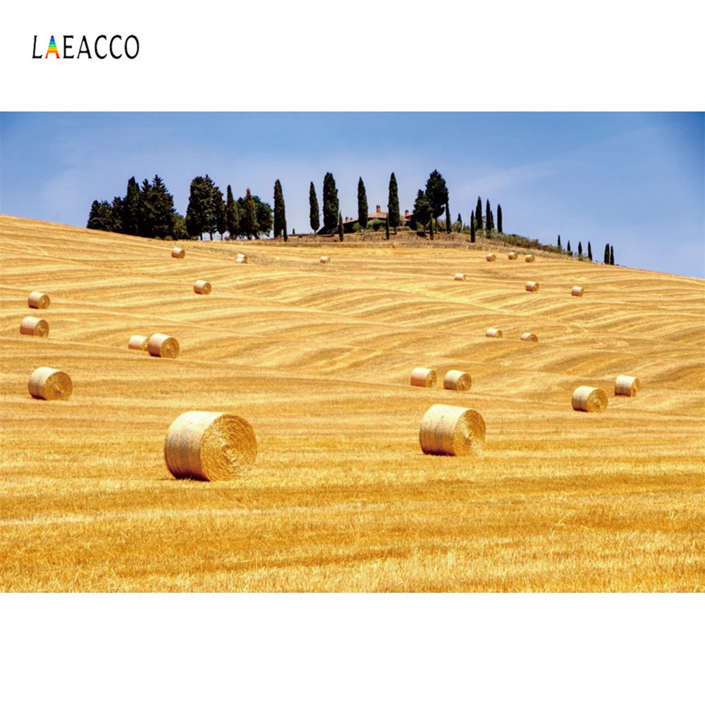 Laeacco Photography Backdrops Grain Harvest Season Farm Agriculture Haystack Blue Sky Scenic Photo Backgrounds For Photo Studio in Background from Consumer Electronics