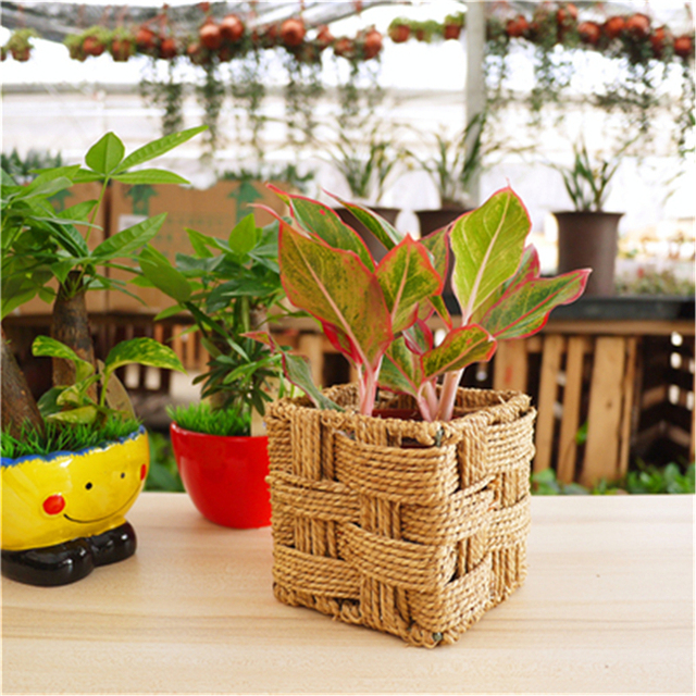 Wonderful Hot Selling Straw Weaves Decor Garden Supplies Flower Pot Planter Box Straw  Plaited Article Decorative Mini