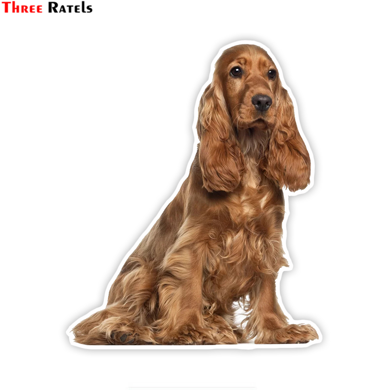 Three Ratels LCS005# 14x17cm Golden Cocker Spaniel Puppy Colorful Car Sticker Funny Car Stickers Styling Removable Decal