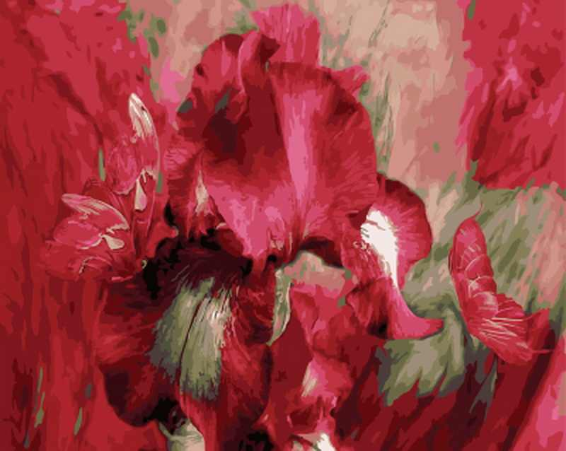 Frameless diy painting by numbers flowers wall decor picture oil painting on canvas for home decor 4050 red peony