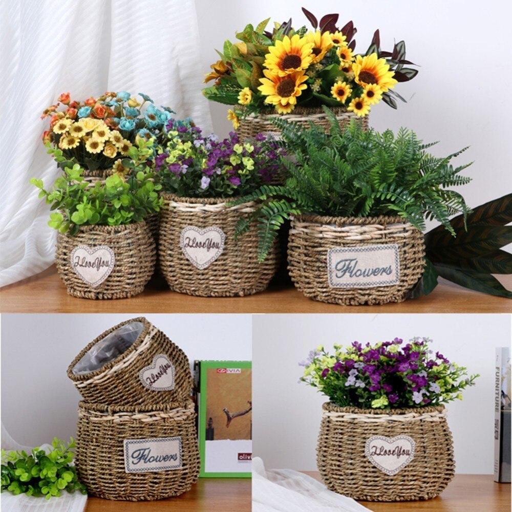 Flor Del Plantador Del Jardin Para Plantas Suculentas Guarderia