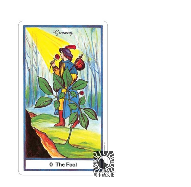 78 pièces version anglaise 100% cartes de Tarot à base de plantes originales conseil de jeu tarot pont Divination avec livre - 4
