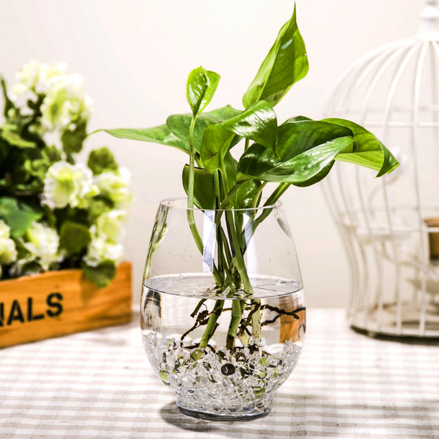 dinosaur egg simple transparent vase hydroponic lucky. Black Bedroom Furniture Sets. Home Design Ideas
