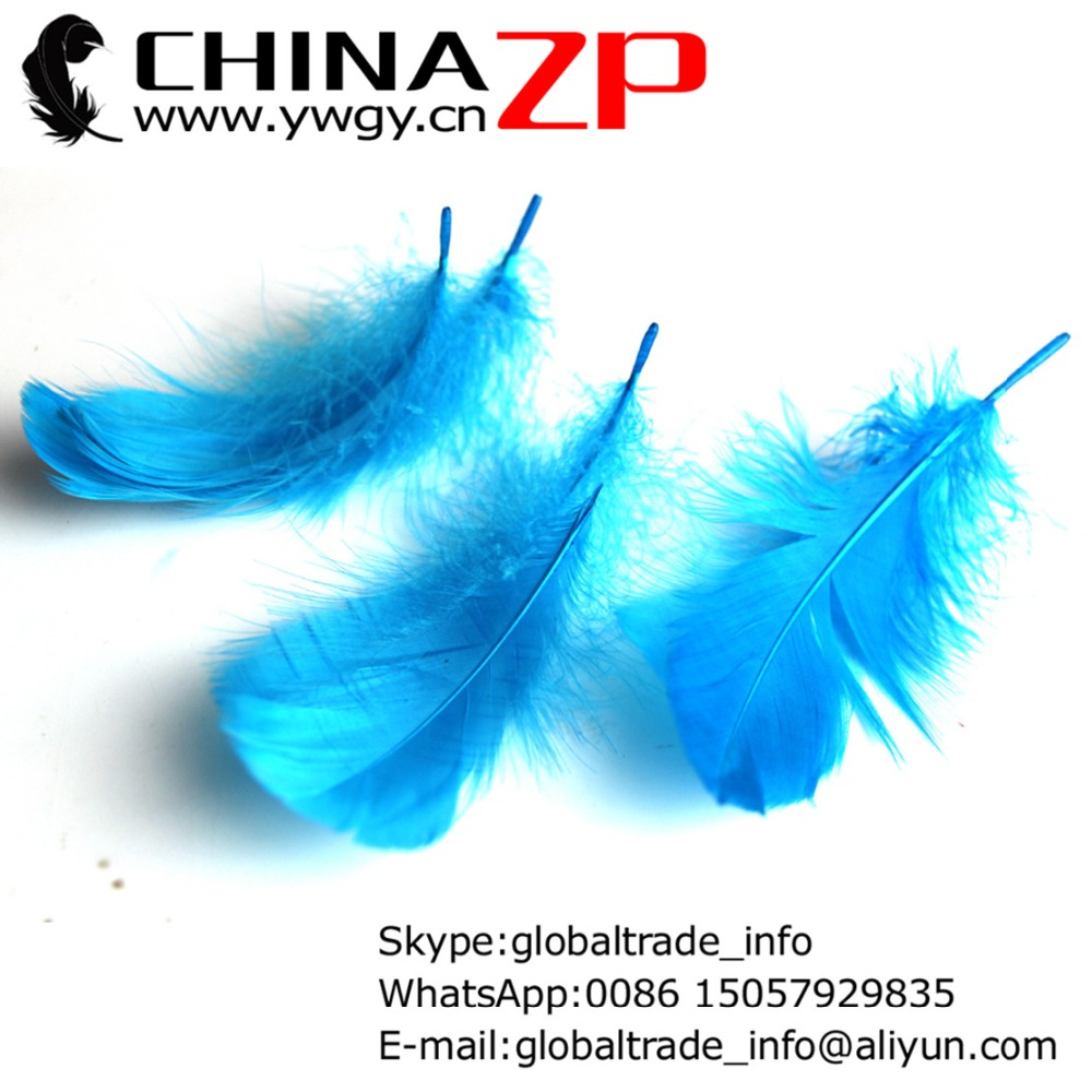 Gold Manufacturer in CHINAZP Factory 500pieces/lot Selected Good Quality Dyed Turquoise Goose Nagoire Loose Feathers
