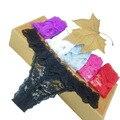 Хорошее качество Хлопка три кошки женские Сексуальные Стринги G-String Underwear Трусики Трусы Для Ladies t-спину 1 шт./лот, zhx99
