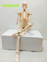 Лучшие Fexible 45 см человека анатомический анатомия модель скелета медицинской оптом и в розницу плакат медицинских узнать помощи анатомия