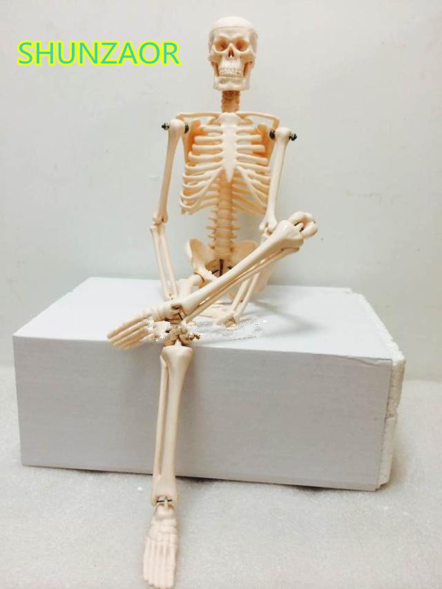 Fexible 45CM Human Anatomical Anatomy Skeleton Model Medical Wholesale Retail Poster Medical Learn Aid Anatomy