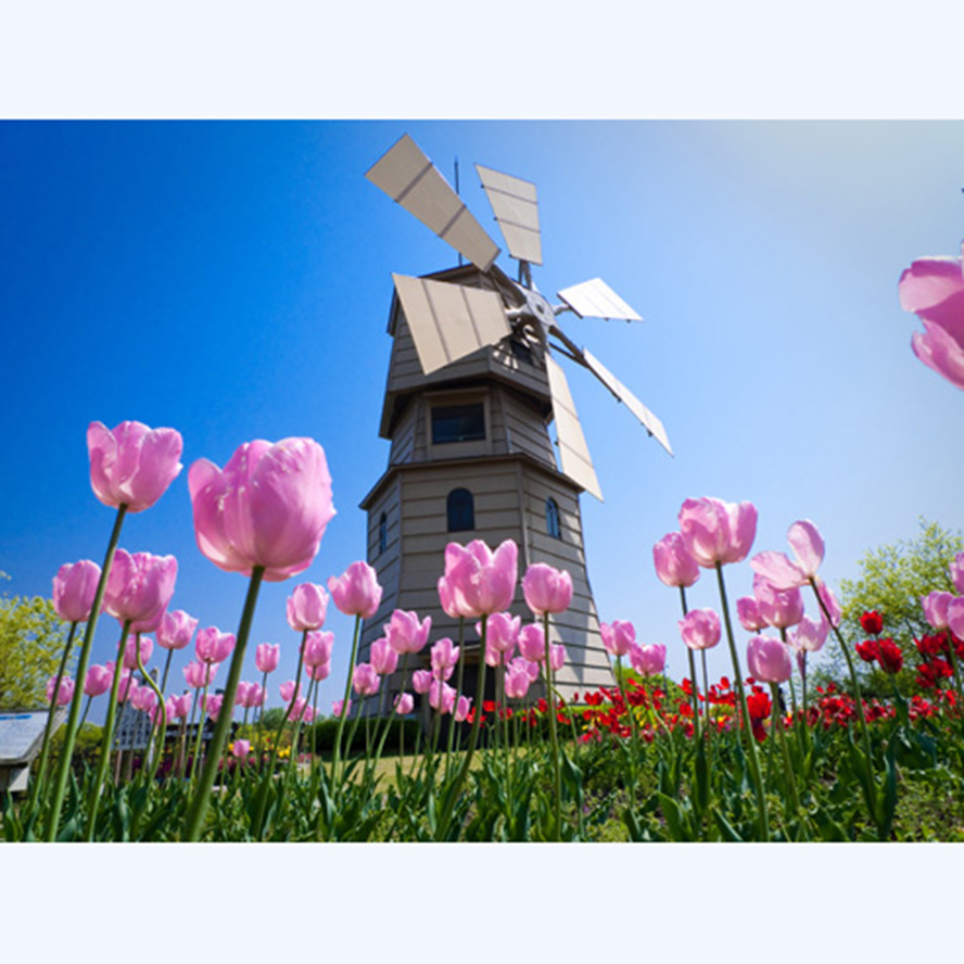 Tulip and windmill 3D Needlework Diy Diamond Painting Embroidery Round Pasted Decorative Wall Stickers Cross Stitch Crafts AS779