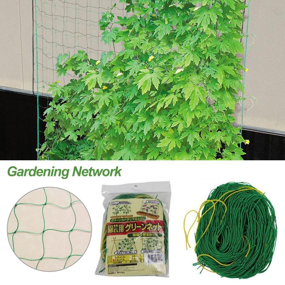 Melon Fruit Morning Glory Vine Net Flower Vine Cucumber Trellis Netting Plant Net For Plant Climbing Garden Supplies