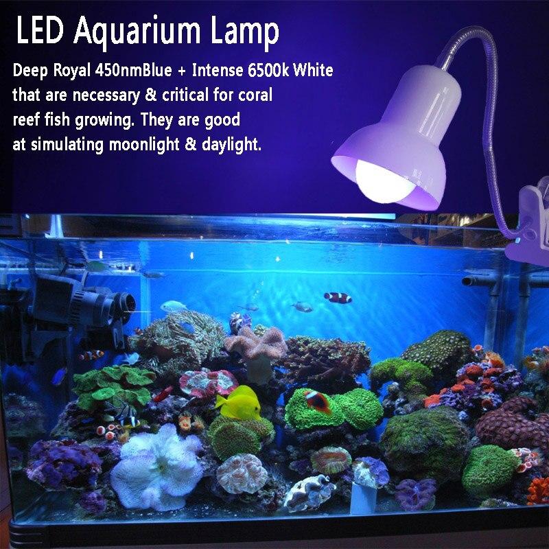 LED / Plants /
