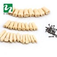 28 תבואה שן שיניים חומר שרף דגם עבור הכנת שן יח'\שקית תרגילי הוראת משלוח חינם