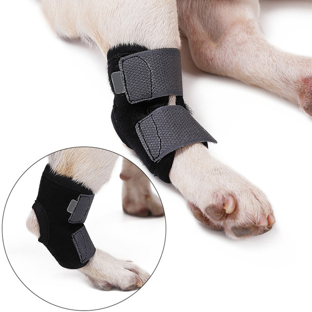 Dog Canine Front Leg Brace Paw Compression Wraps Protects Wounds Brace Heals Prevents Injuries Sprains Helps Arthritis