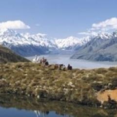 Horse Trekking Mt Cook New Zealand Poster Print (15 x 7)