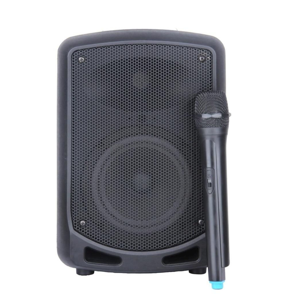 STARAUDIO SBM 065 Pro 6 5 PA DJ 650W font b Recharge b font font b