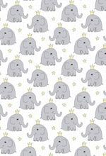 Laeacco Cartoon Elephant Crown Scene Baby Birthday Photography Backgrounds Customized Photographic Backdrops For Photo Studio