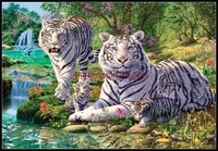 Needlework for embroidery DIY DMC High Quality Counted Cross Stitch Kits 14 ct Oil painting Tiger Nirvana