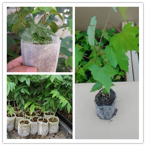 Whole Nursery Pots Seedling Raising Bags Fabrics Garden Supplies Environmental Protection Full 10 12 Size 1000pieces In From Home