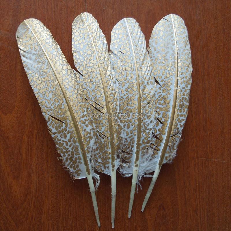 20 Chukar Pheasant Kelly Green Body Plumage Feathers US Seller