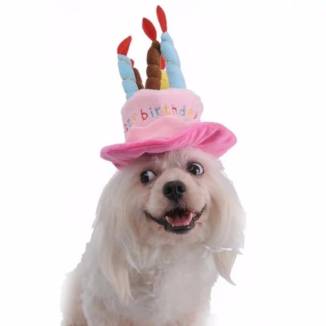 Happy Birthday Pet Dog Hat With Cake And 5 Colorful Candles Design Halloween Christmas Costume Accessories For Small Dogs Cats