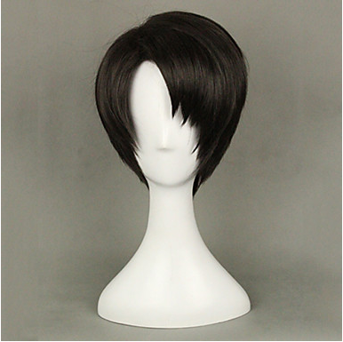 Cosplay Wigs Attack on Titan Levy Black Short Anime Cosplay Wigs 35 CM Heat Resistant Fi ...