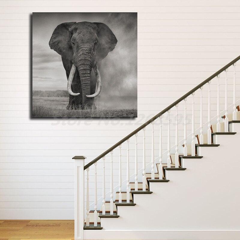 Wild Elephant Print 3