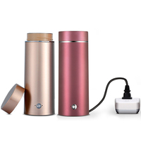 Portable mini Electric Kettle water thermal heating boiler travel Stainless Steel tea pot coffee milk boiling cup 110V 220V
