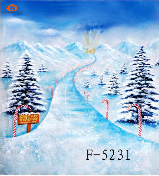 New arrival 10' X 20'/3X 6m Snow Scenic photographic background,hand Painted Muslin photography backdrops christmas F5231 new arrival background fundo thick layer of snow roof 300cm 200cm about 10ft 6 5ft width backgrounds lk 2464