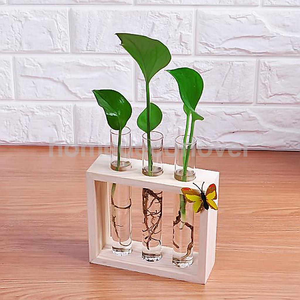 crystal glass test tube vase in wooden stand flower pots for hydroponic plants home garden. Black Bedroom Furniture Sets. Home Design Ideas