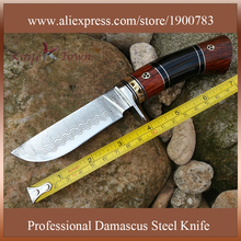 DT047 Sharp Fixed blade Hunting Knife forged Damascus Steel camping knife  wood handle survival Tactical tool edc knife coltelli